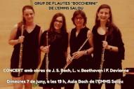 """Grup de flautes """"Boccherini"""" (d'esquerra a dreta): Mireia Gutiérrez, Paz Fandiño, Piluca Llobet i Isabel Serra"""